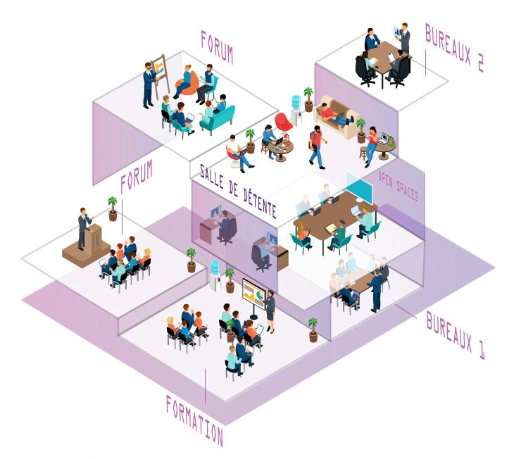 immeuble-illustration4